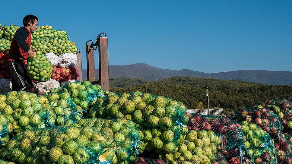 Какое производство фруктовых наполнителей под Воронежем запланировала компания НаDO