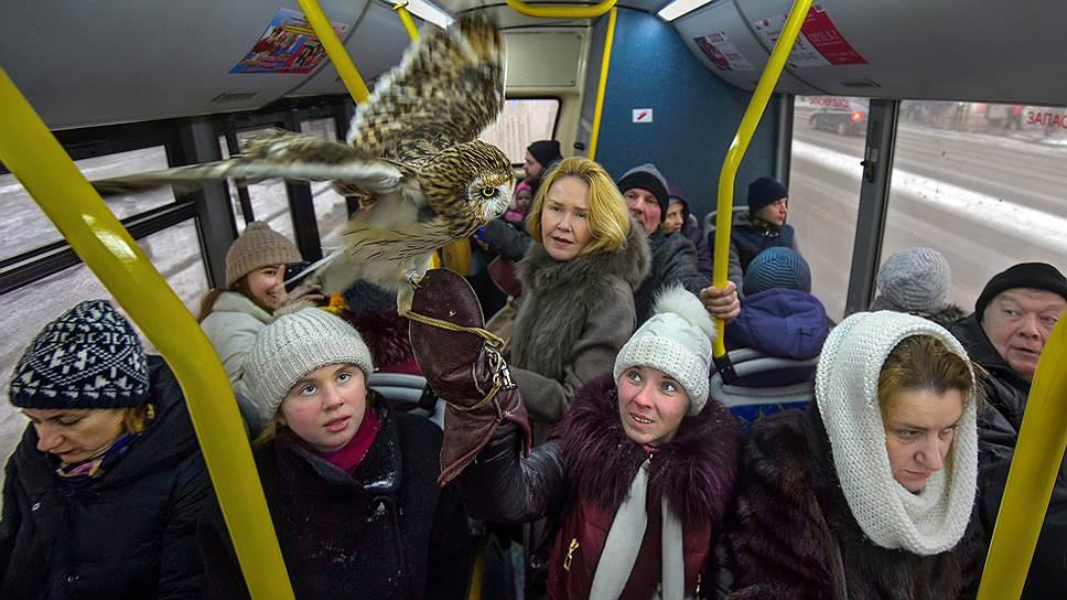Трамвайным хулиганам грозят семилетними сроками / Госдума приравнивает их к дебоширам с оружием