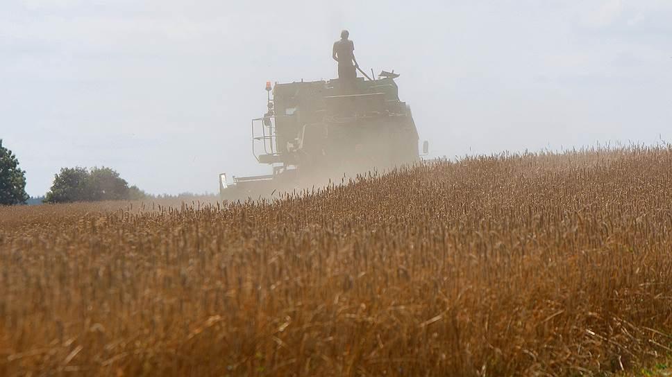 Новосибирские власти договорились с ОЗК об экспорте зерна на рынки стран Азиатско-Тихоокеанского региона
