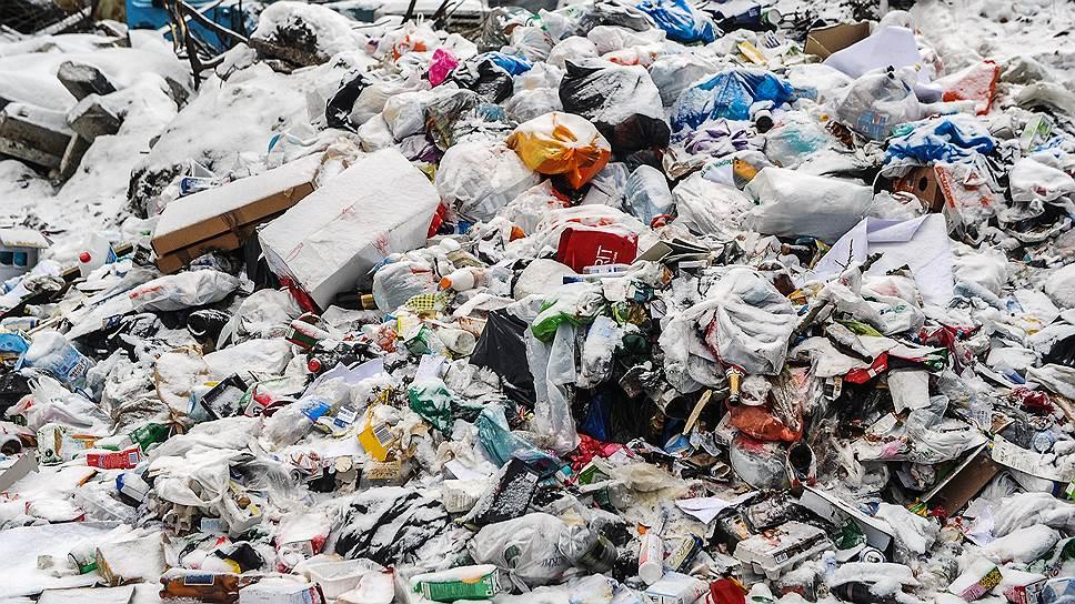 Как жители Коломны борются против «московского» мусора