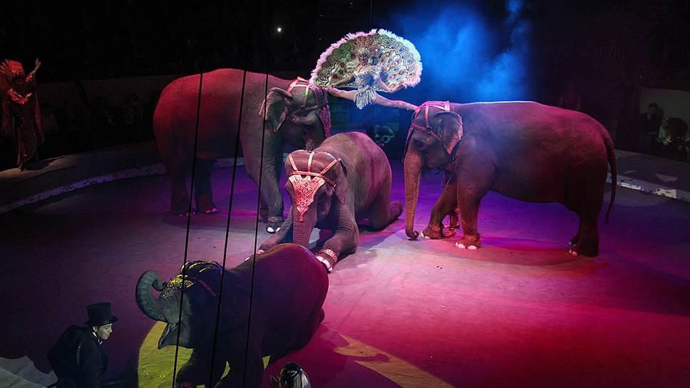 Как российский цирк и Cirque du Soleil не поделили арену