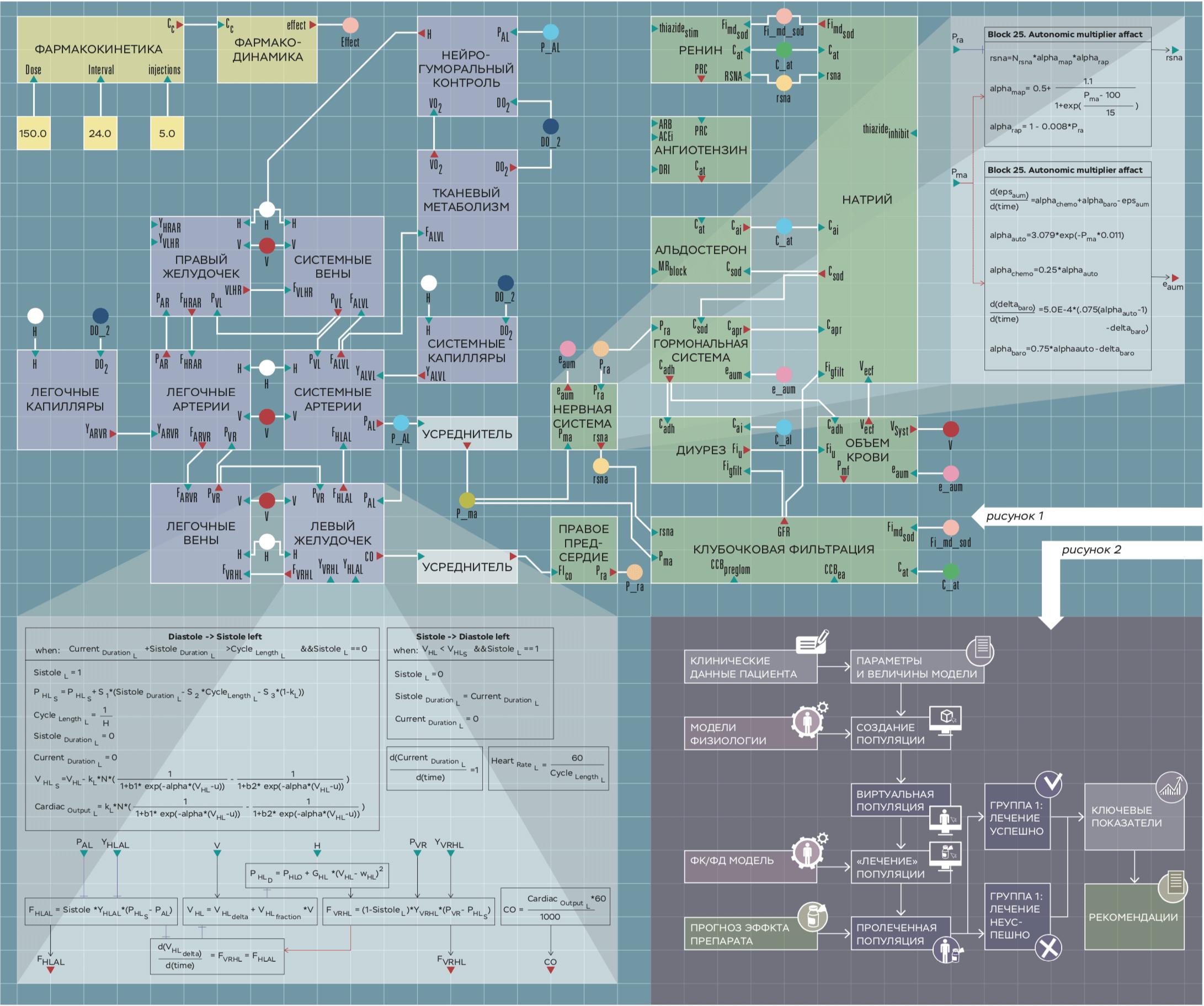 Диаграмма модели регуляции артериального давления у человека. Каждый блок содержит набор переменных и уравнений. Блоки соединены друг с другом, если у них есть общие переменные и параметры