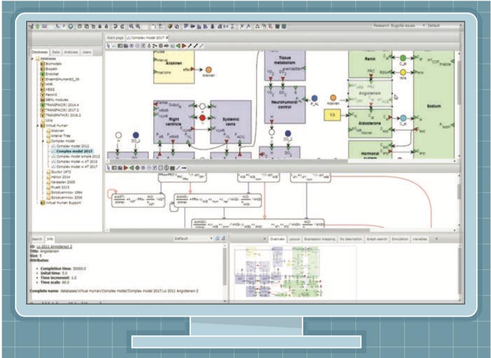 Веб-интерфейс программного комплекса BioUML для моделирования сложных биологических систем