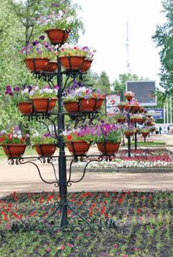 Иркутские парки и скверы год за годом улучшают внешний вид