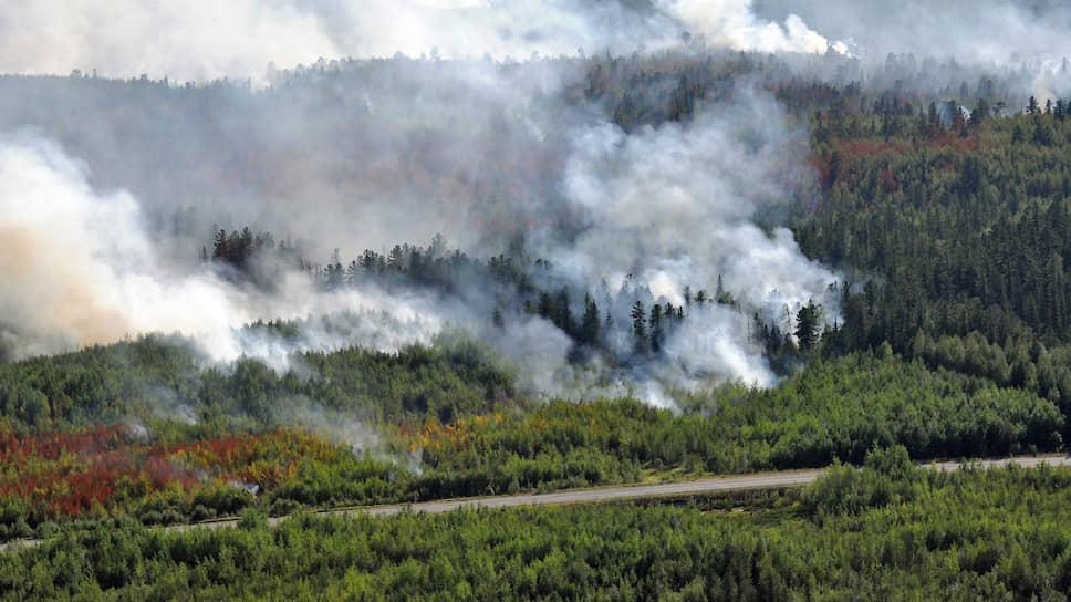 «Гринпис» требует изменить порядок выделения зон контроля, чтобы нельзя было отказываться от тушения пожаров, не угрожающих населенным пунктам