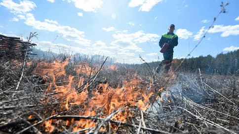 Огонь не пускают из леса // В регионах вводится режим ЧС из-за сложной пожароопасной обстановки