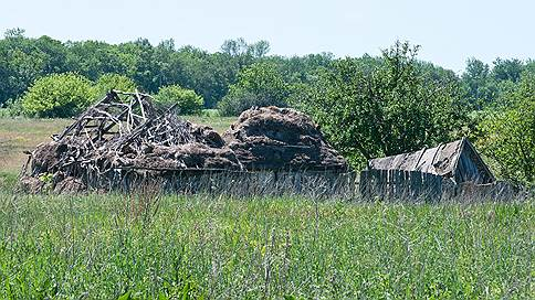 Рапс прорастает жильем // Липецк готовится перевести почти 500 га сельхозземель под строительство