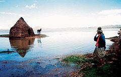Кроме тростника индейцы используют в пищу озерную рыбку и мясо птиц