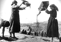 Анархисты убеждали испанский народ, что уже построили коммунизм, а потому поверившие им крестьяне бросали стратегические запасы продовольствия на ветер