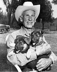 Ли Дункан заполучил один из самых ценных трофеев первой мировой войны: Рин Тин Тин стала первой собачьей кинозвездой, а ее щенки — самыми продаваемыми в Америке