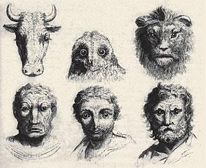 Физиогномисты задолго до Дарвина установили связь между человеком и его меньшими братьями