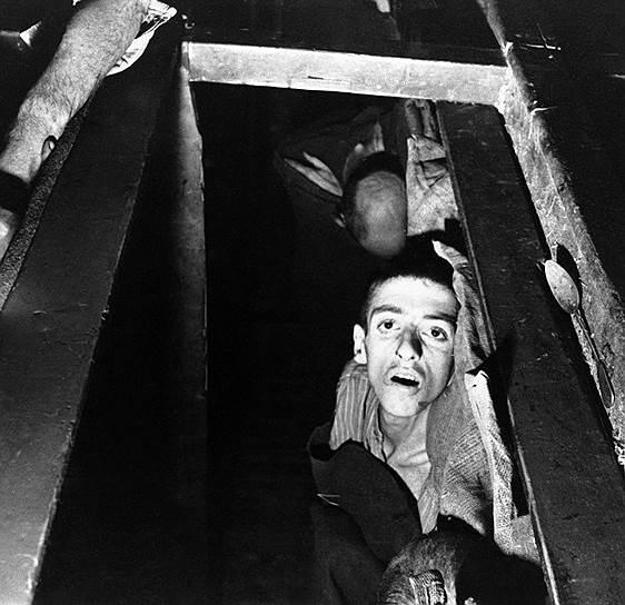 Во время Второй мировой войны на подконтрольных фашистам территориях действовало 14 тыс. концентрационных лагерей, в которых, по различным оценкам, содержались от 18 млн до 20 млн человек из 30 стран мира. Из них более 11 млн были уничтожены. Каждый пятый узник был ребенком