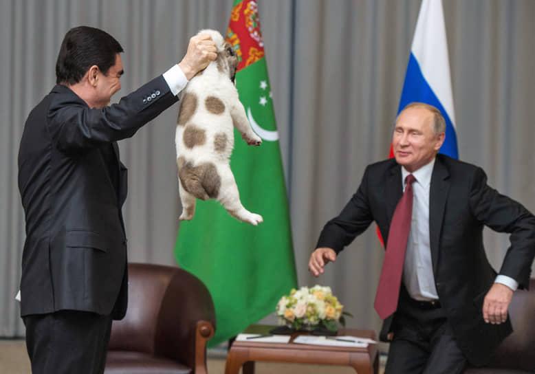 11 октября 2017 года президент Туркмении Гурбангулы Бердымухамедов подарил Владимиру Путину на 65-летие щенка породы туркменский алабай. Кличка собаки — Вепалы, что значит Верный. Он живет в резиденции Ново-Огарево