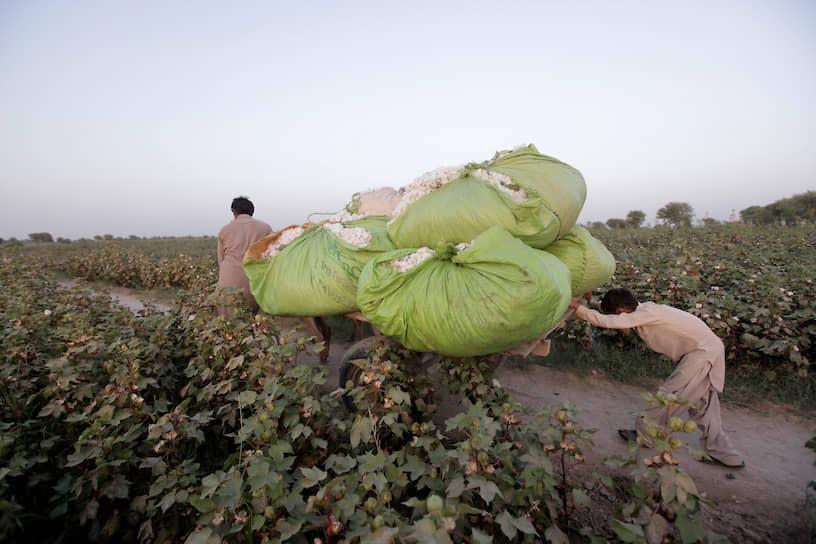 Разделительная линия между странами, где распространен детский труд, и странами, где этого нет, проходит там же, где граница между Западом и «третьим миром». Экономический баланс многих процветающих стран во многом базируется на торговле со странами развивающимися, в которых себестоимость произведенных товаров низка