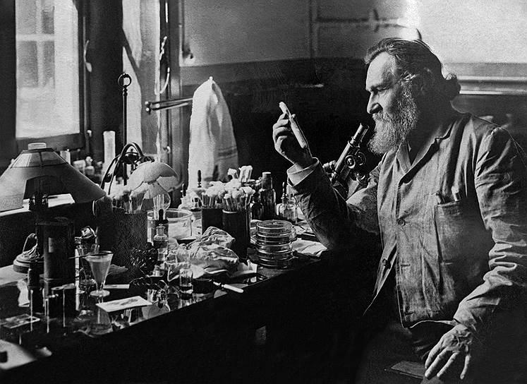1908 год. Нобелевская премия в области физиологии и медицины присуждена русскому и французскому биологу Илье Мечникову. Основатель научной геронтологии и создатель фагоцитарной теории иммунитета, он получил награду «за труды по иммунитету»