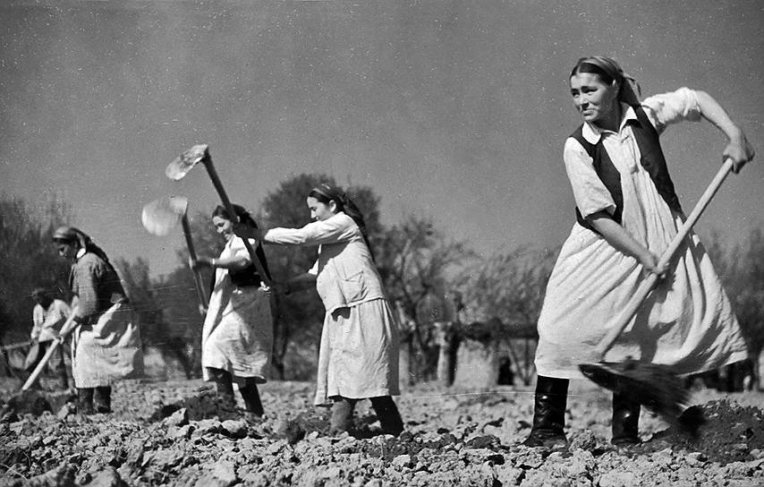 Наказания за прогулы смягчили только в 1951 году, когда совершивших проступок работников разрешили наказывать руководителям предприятий. А чтобы попасть под суд, виновный должен был совершить два прогула за три месяца. Однако наказание за самовольный уход с завода или из учреждения оставалось в силе до 1956 года, когда действие указа от 26 июня 1940 года было отменено