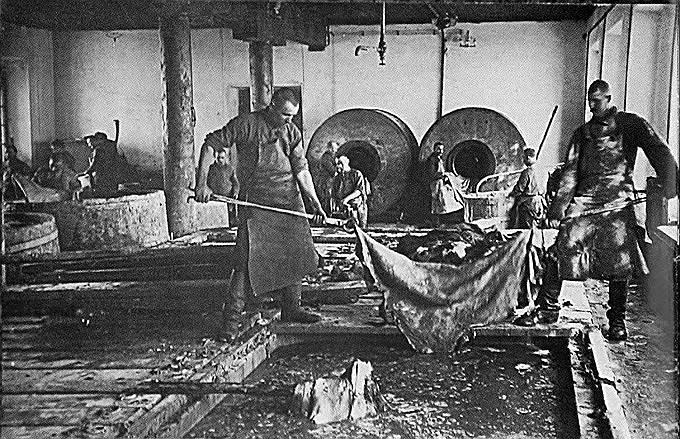 Первые заключенные прибыли на Соловецкие острова 6 июня 1923 года. Со временем лагерь расширился и казармы были построены уже на материке — в Карелии, в Северном Приуралье. К 1933 году в СЛОНе  было уже более 19 тыс. заключенных. Соловецкие лагеря особого назначения и более поздние профильные учреждения приняли, по некоторым данным, около 100 тыс. человек<br>На фото: заключенные во время работ по обработке кожи