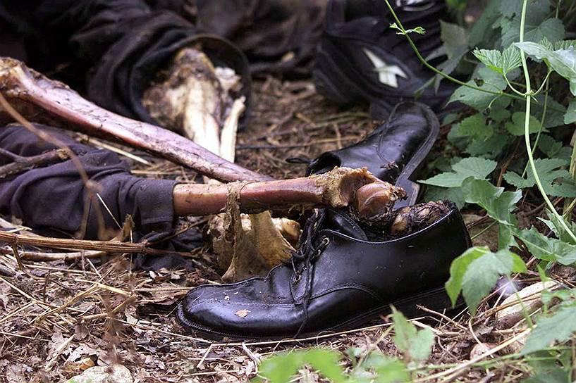 О провозглашении независимости Косово от Сербии было объявлено 17 февраля 2008 года. Мировая реакция на это была бурной. Уже на следующий день о признании независимости или о готовности сделать это в ближайшее время заявили ведущие страны Запада. Лишь 3 из 27 стран Евросоюза — Кипр, Испания и Румыния — решительно выступили против<br>На фото: человеческие кости возле братской могилы на западе Косово