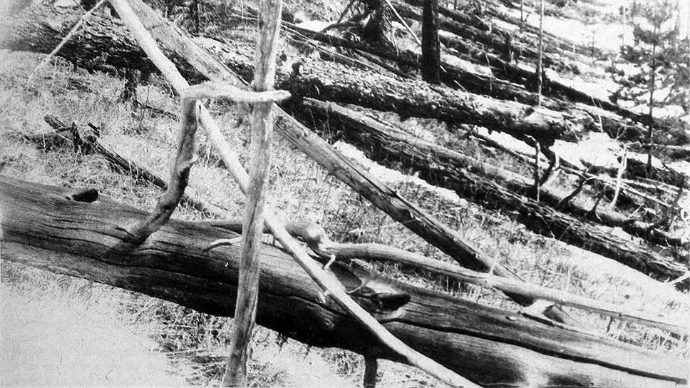 1908 год. Падение Тунгусского метеорита