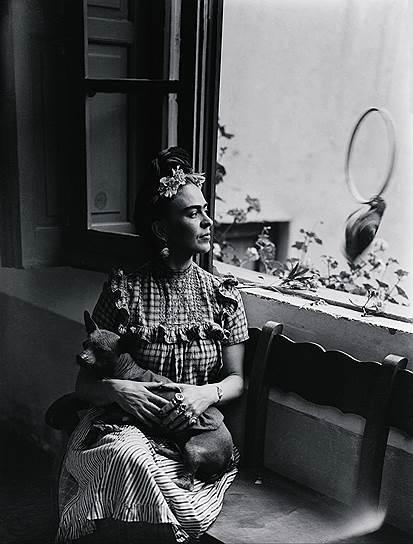 Последняя прижизненная выставка Кало прошла в Мехико в 1953 году — за год до ее смерти. К этому времени она уже не могла ни ходить, ни рисовать — ей ампутировали ногу, а руки  дрожали из-за продолжительной депрессии. Однако на вернисаже она всё-таки появилась: ее на носилках внесли в зал. В этот момент Фрида Кало держала в руках бокал шампанского