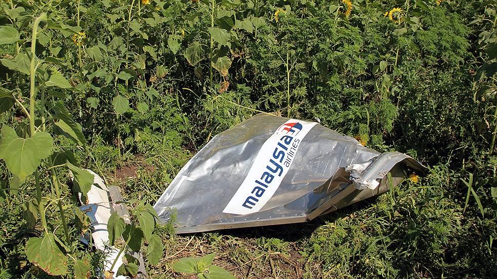Как эксперты ОБСЕ вновь прибыли на место крушения Boeing 777 на Украине