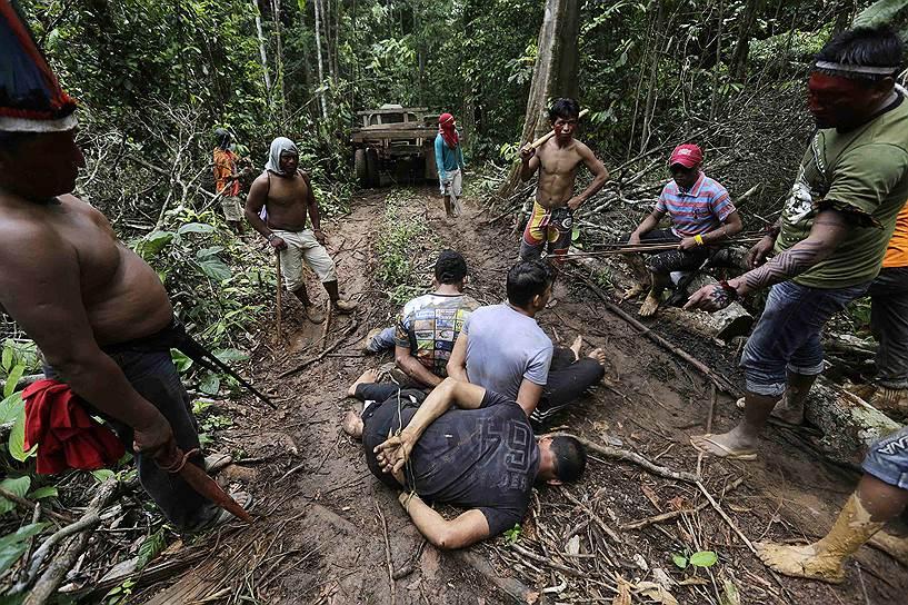 В лесах Амазонки идет настоящая война коренных индейцев против мародеров-лесорубов