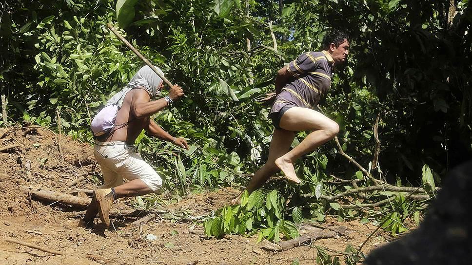 Племена объединяют усилия в борьбе с незаконной вырубкой лесов