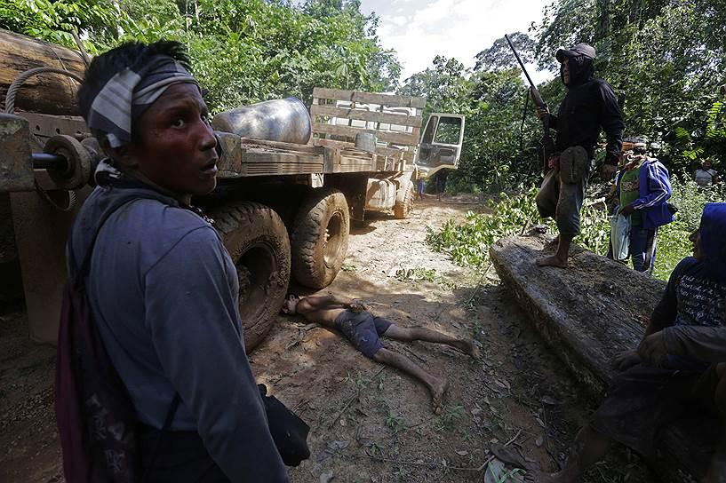 Индейцы не надеются на поддержку государства и устраивают рейды на лесорубов, уничтожающих леса