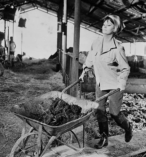 Возможно, Софи Лорен мир выбрал противоядием от Бриджит Бардо. Лорен стала символом кинематографа привычного, комфортного, от которого не зажмуривались зрители 1950—1960-х. Для страдающих «бардофобией» зрительниц ее героини стали отдушиной. Простые, земные и настоящие женщины<br>На фото: кадр из фильма «Легенда о былом»