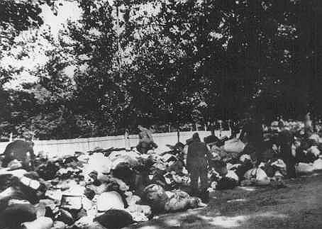 Еврейскому населению Киева было приказано собраться в  Бабьем Яре под предлогом отправления «в безопасное место». В основном это были женщины, дети и старики, так как мужчины были призваны в армию. Перед расстрелом людей заставляли раздеваться. На дорогах на подъезде к Бабьему Яре лежали огромные кучи одежды и домашней утвари жертв расстрела, которую те взяли с собой, ожидая переезда