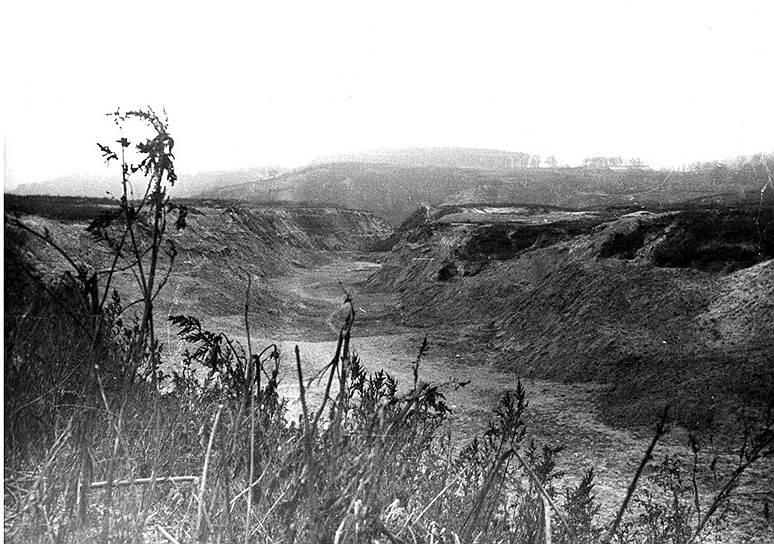 27 сентября 1941 года произошел первый расстрел в Бабьем Яре. Первыми жертвами стали 752 пациента психиатрической больницы им. Ивана Павлова, которая находилась недалеко от оврага. О расстреле известно только документально, точное место так и не было установлено