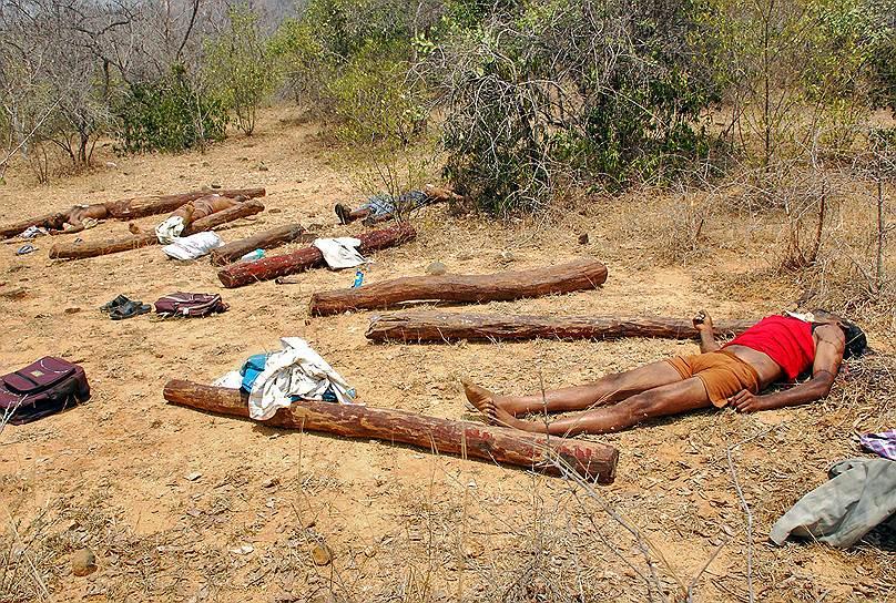 Штат Андхра-Прадеш, Индия. Тела людей, убитых при проведении спецоперации против нелегальной добычи сандалового дерева. Во время крупнейшей за последние годы операции было застрелено 20 человек. Оппозиция и правозащитники призвали к всестороннему расследованию, утверждая, что погибшие были безоружными рабочими