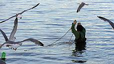 Чукотскую рыбу сняли с крючка