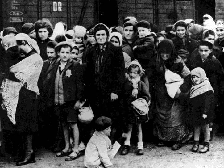 Симона Вайль, почетный президент Фонда памяти Шоа, Париж, Франция, бывшая узница Освенцима: «Мы работали более 12 часов в день на тяжелых земляных работах, которые, как оказалось, были большей частью бесполезными. Нас почти не кормили. Но все же наша судьба была еще не самой худшей. Летом 1944 года из Венгрии прибыли 435 000 евреев. Сразу после того, как они покинули поезд, большинство из них отправили в газовую камеру»