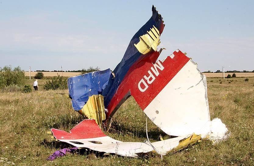 «Мы предупреждали их — не летайте в нашем небе», — заявил Игорь Стрелков, имея в виду Ан-26 с украинскими военнослужащими, который должен был находиться в то же время примерно в том же районе. Этот пост был вскоре удален. На Западе считают, что ополченцы перепутали гражданский лайнер с Ан-26