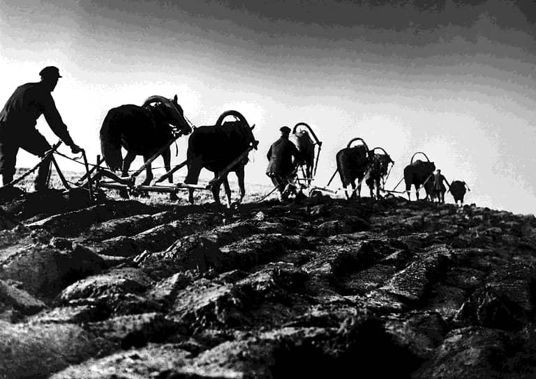 К концу Гражданской войны Россия находилась в упадке: за четыре года население сократилось более чем на 10 млн человек, промышленное производство упало в семь раз, сельскохозяйственное — на треть. Политика «военного коммунизма», проводившаяся до 1921 года, вызывала все большее недовольство среди крестьян, у которых отбирали последний хлеб продотряды для снабжения армии и жителей промышленных центров