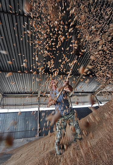 13 августа. Расширение продовольственного эмбарго РФ на Албанию, Черногорию, Исландию, Лихтенштейн и Украину