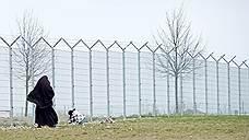 Чеченские мигранты вписались в немецкую статистику