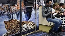 «Все на метро ездят — и на выборы поедут»