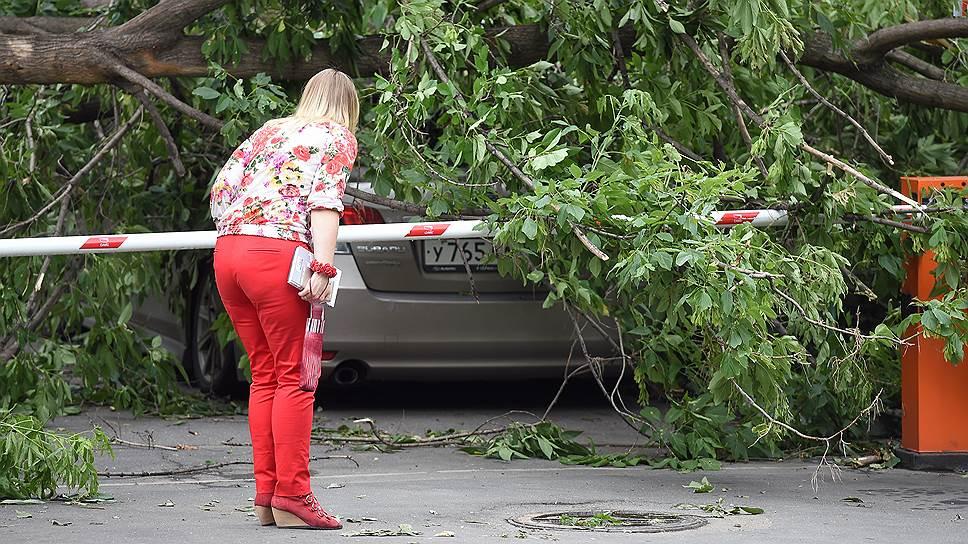 Как на Москву обрушился ливень с грозой