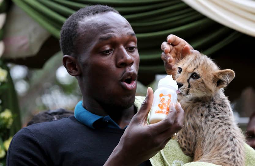 В 2009 года Усейн Болт посетил Кению, где взял под патронаж трехмесячного гепарда, родителей которого убили браконьеры. Спортсмен назвал хищника Молнией и заплатил за него $13,7 тыс. Ежегодное содержание гепарда в приюте для животных в Найроби обходится спортсмену в $3 тыс.
