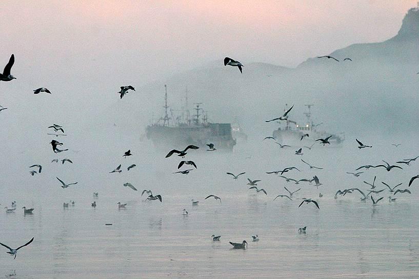 Бухта Крабовая, остров Шикотан