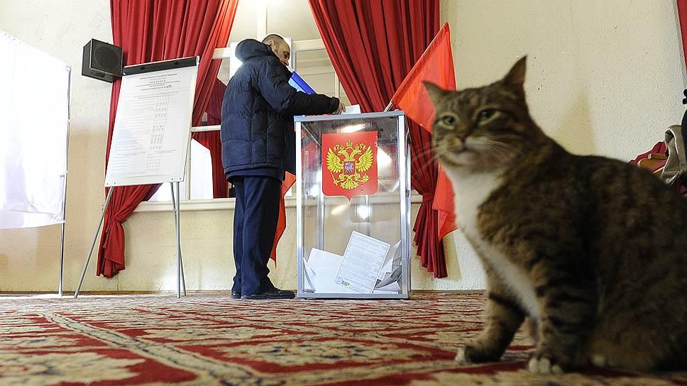 Почему Центризбирком не нашел нарушений на выборах в Госдуму