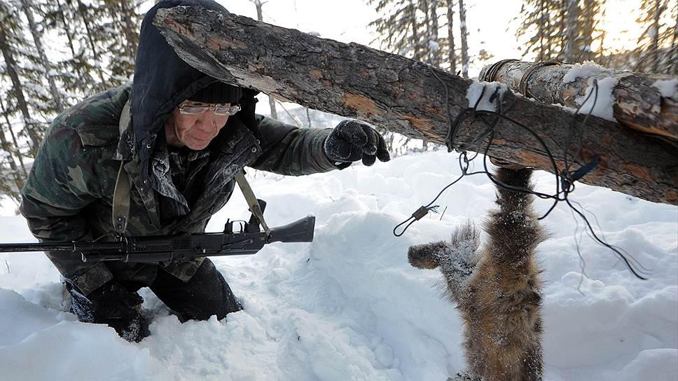 Экологи обратились к Сергею Иванову с просьбой не допустить разрешения петельного лова