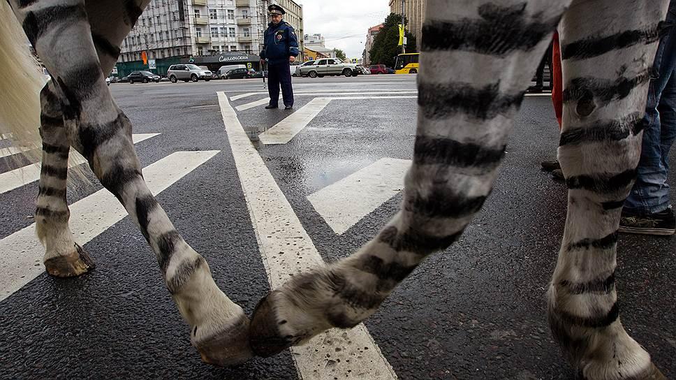 Почему решили увеличить штраф за отказ пропустить пешехода на «зебре»