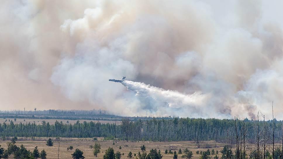 Почему экологи считают необходимым механизм изъятия у региона переданных полномочий по надзору за лесами