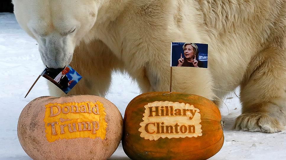 Как готовились к слушаниям о российском вмешательстве в американские выборы