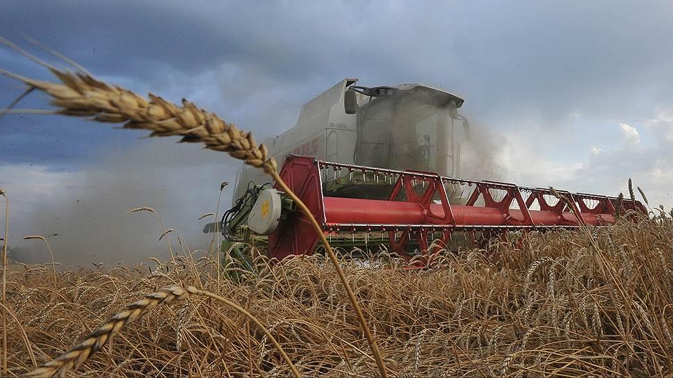 Как зерно очищают от посредников