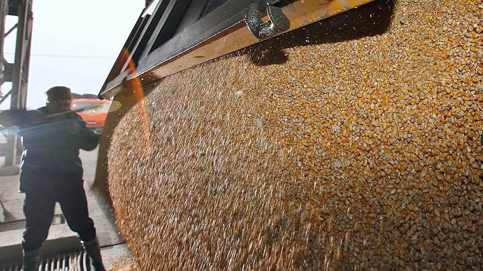 Как экспортеры и ФНС договорились о контроле оборота сельхозпродукции