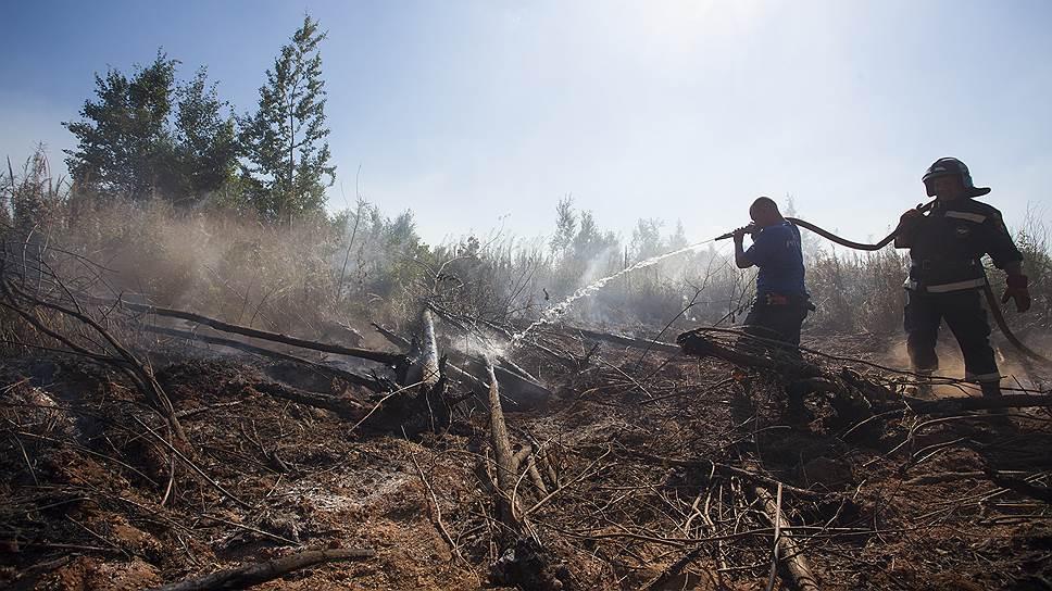 Почему высока вероятность природных пожаров в Сибири